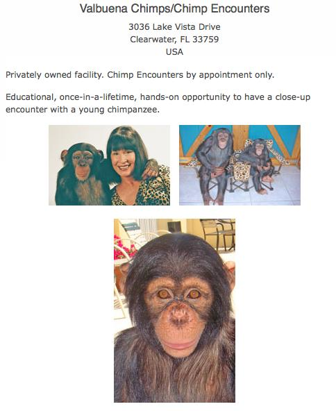 Chimp_encounters