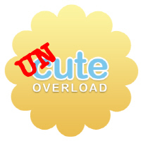 Uncute_copy